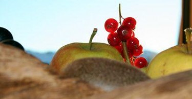 Sommerfrüchte