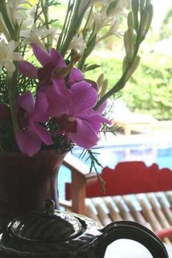 Blumen Sommer