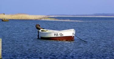 Fischerboot auf Poel