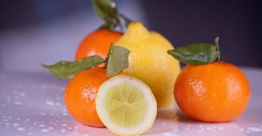 Apfelsine und Zitrone