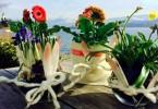Frühlingsblumen am See