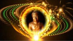 buddha-video