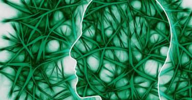 neuronale Pfade