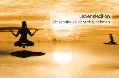 Abnehmen-Lebenslexikon-2016-Stefanie-Menzel