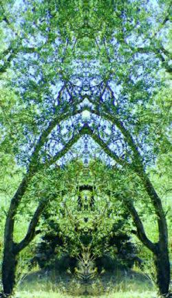 Beate-Leber-Flyer-Frontbild