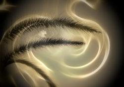 gras-gesicht-mystik-bamboo