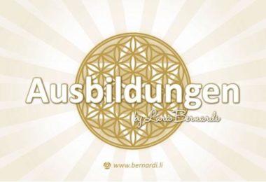 Bernardi-banner-ausbildungen