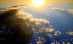 Sonne-wolken-voegel-sunset