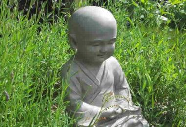 kindlich-wiese-buddha