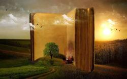 Buch-aufgeschlagen-Stuhl-Wiese-book