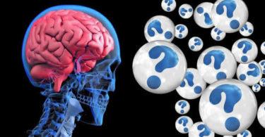 kopf-durchsichtig-fragezeichen-brain