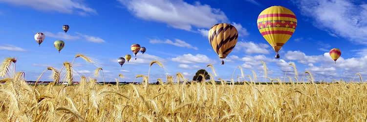 kornfeld-ballon-reisen-nature
