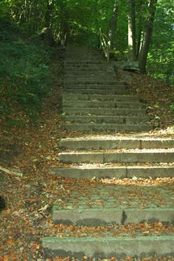 Wertvorstellungen und Glaubenssätze-2_Treppen