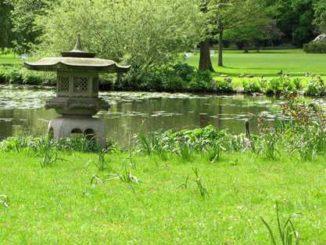 Mai im botanischen Garten