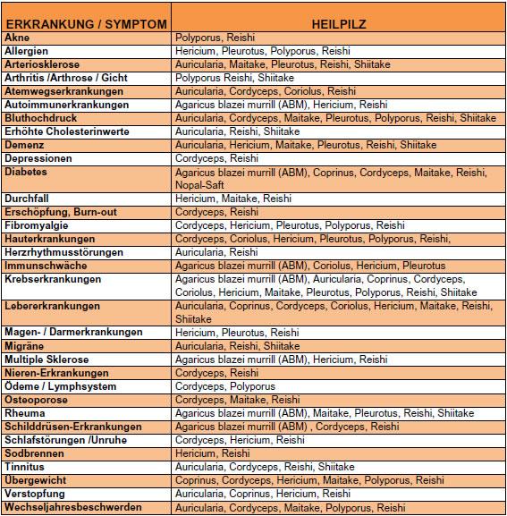 2_MT-BPM-Therapiemöglichkeiten mit Heilpilzen
