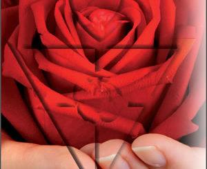 AMORC - Rose - Kreuz