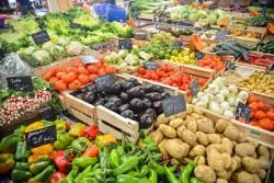 Lebensmittelvernichtung Gemüsekästen