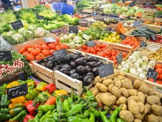 Gemüsekästen