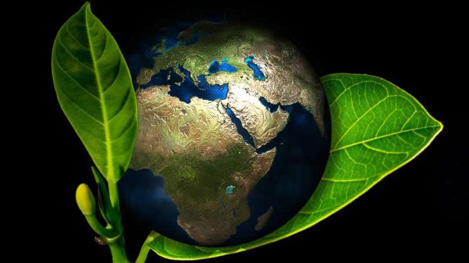 Spirituelle Ökologie -Erde im Blatt