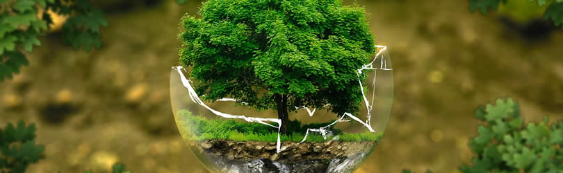 550_250_NaturschutzErde_earth_pixabay