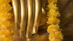 hand-golden-buddha