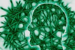 400-267-neuronale-Pfade-neural-pathways