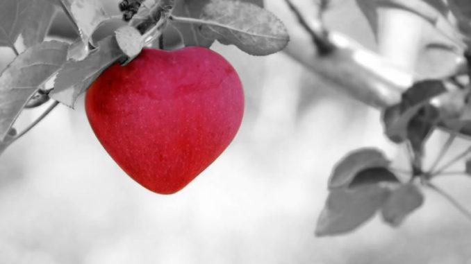 roter Apfel in schwarz weiss Bild