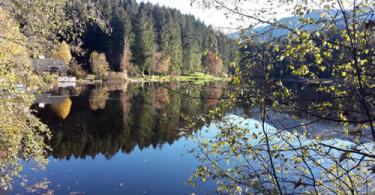 Tiroler Bergsee