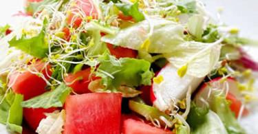Melone, Salat, Sprossen