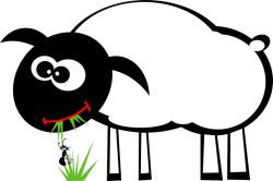 Existenz Gottes Schaf-Ameise-spirit-von-unten