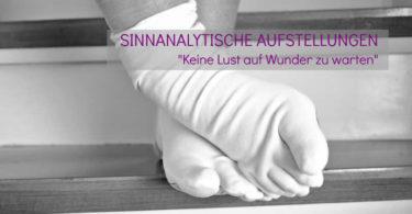 Sinnanalytische-Aufstellungen-2016-Stefanie-Menzel