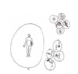Prinzipiendes Bewusstseins andreas graf Guide 1