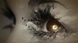 auge-traenen-frau-eye