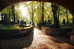 friedhof-cemetery
