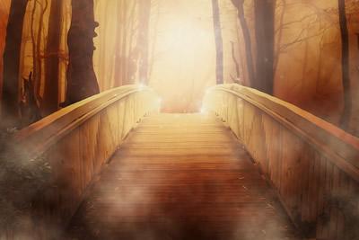 bruecke-licht-bridge