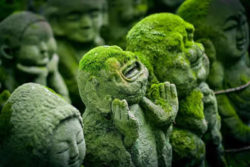 Wissenschaft und Religion Stein Figuren Moos kyoto