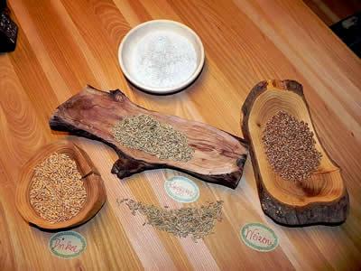 Getreide-dinkel-roggen-cereals