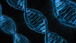 science of epigenetics dns strang gene dna
