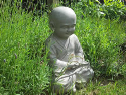 Achtsamkeit und das innere Kind-kindlich-wiese-buddha