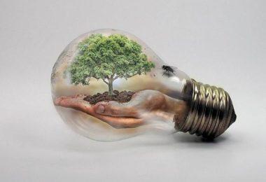 gluehbirne-baum-hand-bulb