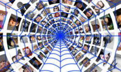 spinnennetz-fotos-cobweb