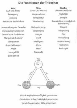 Authentisches Ayurveda funktionen der Tridoshas peisger devaya