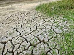 Klima-Wandel-Duerre-climate-change