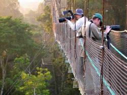 lion-tours-ecuador-amazonas-lodge