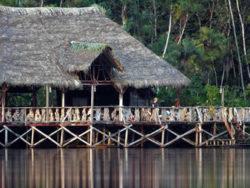 lion-tours-ecuador-sacha-lodge-amazona