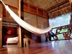 lion-tours-ecuador-sacha-lodge-haenge