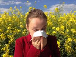 Naturheilmittel gegen Allergien Allergie Pollen Frau Raps allergy