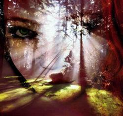 Bist Du ein Medium-Gesicht-Augen-Wald-Licht-face