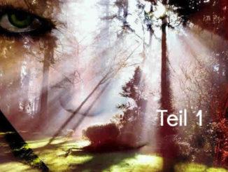 Medial -Teil1-Gesicht-Augen-Wald-Licht-face