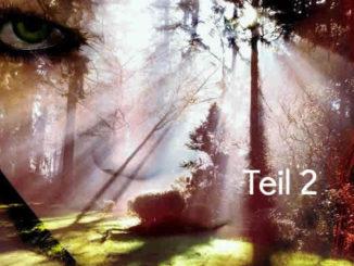Bist Du ein Medium-Teil2-Gesicht-Augen-Wald-Licht-face